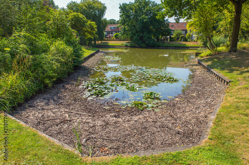 Poster de jardin Nénuphars Drying european pond in summer season