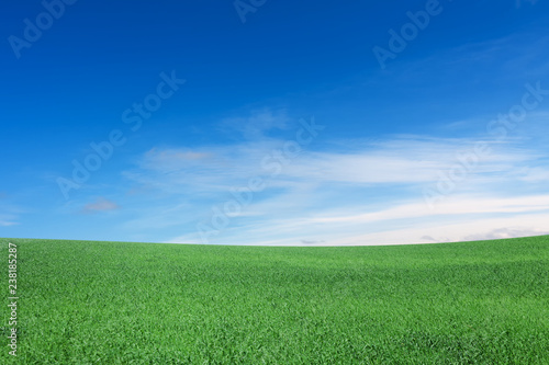 Fotografie, Obraz  Meadow, sky, hill, clouds
