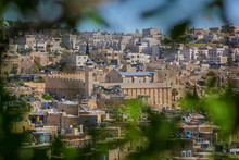 Landscape View Of Ibrahimi Mosque Or Cave Of The Patriarchs At Hebron, Palestine From Tel Rumeida View With Olive Tree Leaves