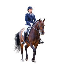 Young Dressage Woman On Horse Isolated On White
