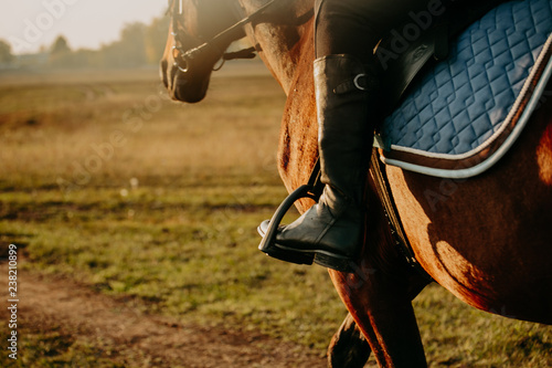 Fotografía  Young woman horseriding in sunset on the fields. Close up