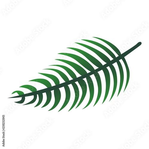 Fényképezés  Long tropical leaf icon
