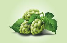 Vector Realistic Beer Green Ho...