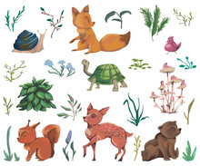 Collection Of Forest Animals, Mushroom, Plant, Flowers, Berry, Cones. Decorative Elements In Watercolor Style For Greeting Card, Invitation, Baby Shower Party. Cartoon Characters. Vector Illustration.