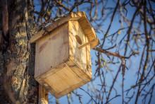 Birdhouse In A Tree In Winter