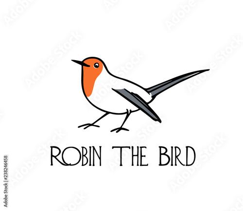 Photo Hand drawn robin