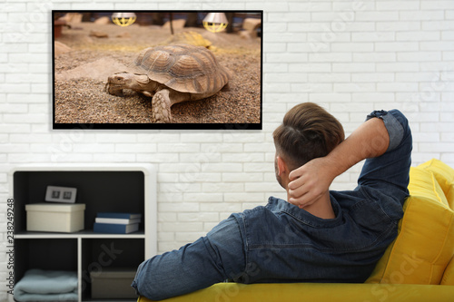 Young man watching TV on sofa at home