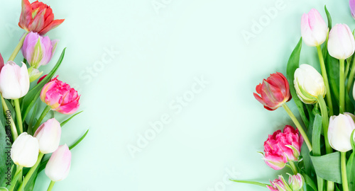 Foto op Plexiglas Tulp Bouquet of fresh tulips flowers frame on pastel green ment background banner