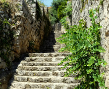 Isolated Stone, Stepped Footpath Rising Past Stone Building And Wall, With Wildflowers Growing, Set In Sunshine On Hillside With Natural Shadows. Lopud, Croatia