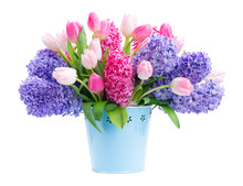 Bunch Of Hyacinth Blue And Pin...