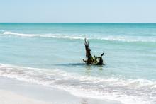 Sanibel Island, Florida, USA B...