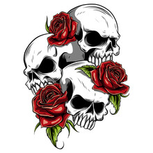 Human Skull With Roses Drawn In Tattoo Style