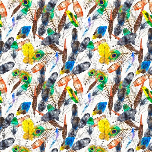 Foto op Plexiglas Paradijsvogel Watercolor feathers seamless pattern. Hand painted texture