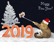 canvas print picture - The cat in a Santa Claus hat makes selfie near the number 2019 made from sausage on the snow in the winter forest. Happy New Year.