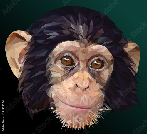 Low polygon vector of young chimpanzee face. Wallpaper Mural