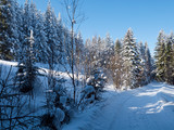 Malowniczy zimowy pejzaże górskich krajobrazów w słonecznym świetl
