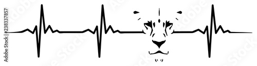 Fototapeta premium Bicie serca lwa #isolated #vector - bicie serca lwa