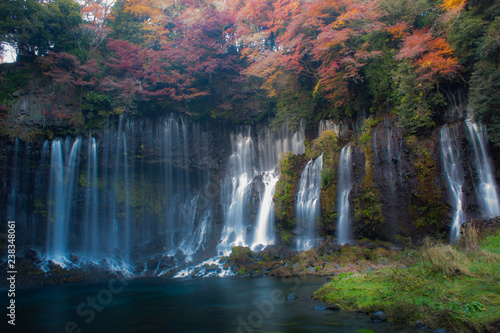 Wall Murals Waterfalls 滝
