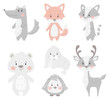 Reindeer, raccoon, seal, wolf, penguin, bear, fox baby winter set. Cute animal illustration