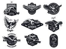 Set Of Vector Eagles.