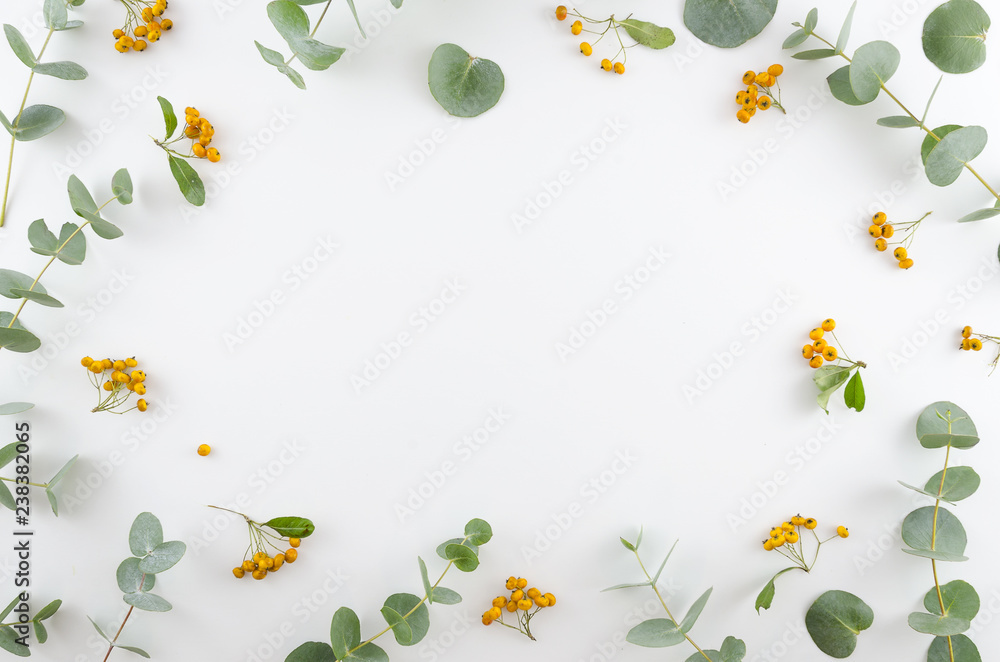 Fototapety, obrazy: Spring flowers composition. Rectangular frame made of yellow rowan berries and gree eucalyptus branches on white background. Flat lay, top view, copy space.