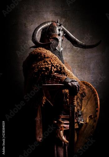 Portrait of a Viking Canvas Print