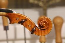 Violin Scroll, Head Details Wi...