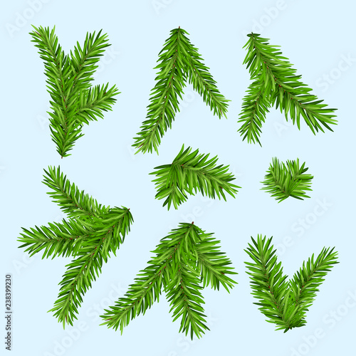Christmas Branch Vector.Set Of Fir Branches Christmas Tree Or Pine Branch Vector