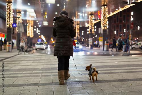 Fototapeta premium Kobieta i jej pies spacerują w mroźną zimową noc po dworcu głównym w Wiedniu