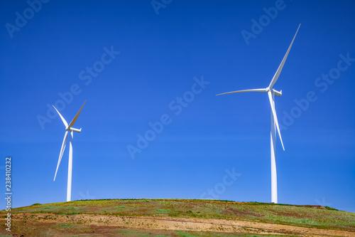 Fotografie, Obraz  wind turbines on hill top