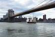 Tall Ship sailing under the brooklyn bridge, New York