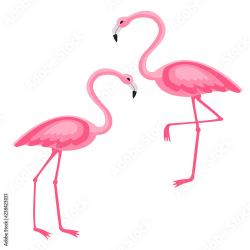Canvas Prints Pink Flamingo isolated vector illustration