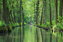 Spreewald Hochwald - Spree For...