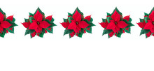 Christmas Flower Composition. Border Made Of Poinsettia On White Background. Christmas, New Year, Winter Concept. Flat Lay, Top View, Copy Space, Banner