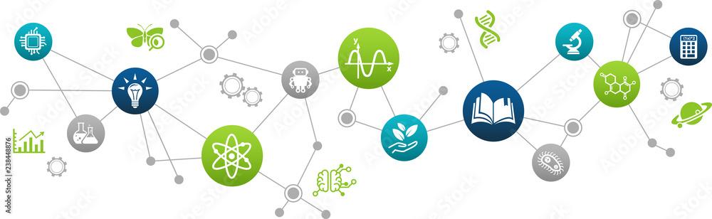 Fototapeta STEM science concept / various scientific research fields / science education -  vector illustration