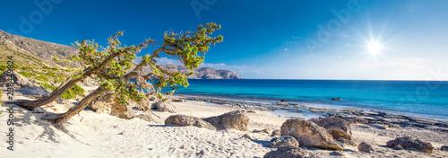 Poster Tropical beach Kedrodasos beach near Elafonissi beach on Crete island with azure clear water, Greece, Europe