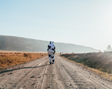 Person Walking Down A Road In A Cow Costume