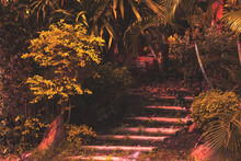 Vintage Style Stairs In The Garden.