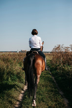 Rear View Of Female Rider Riding Horse On Grassy Field Against Clear Blue Sky During Sunny Day