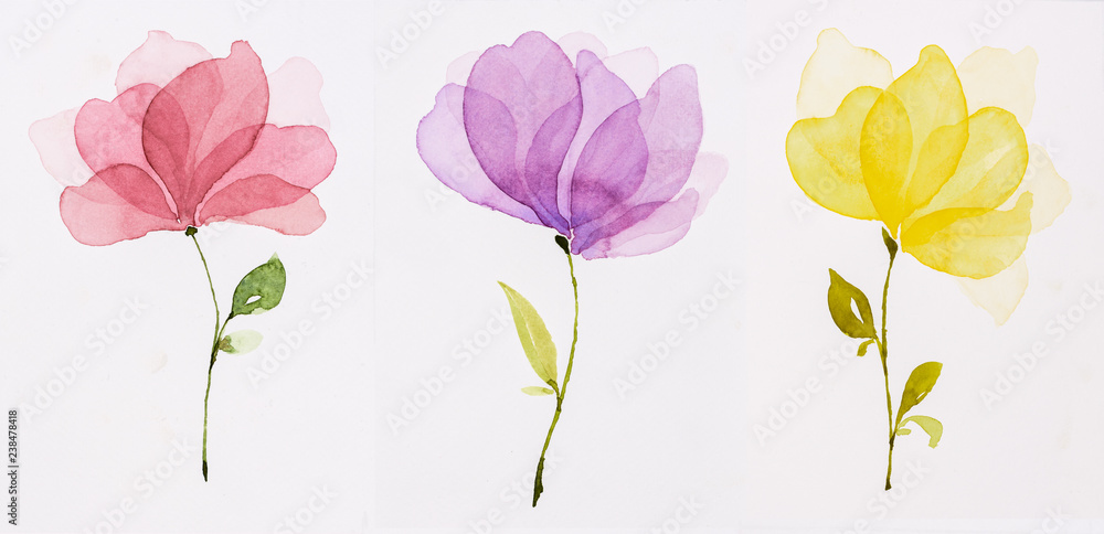 Fototapeta Picture water colour, hand draw, Red flowers, purple, yellow.