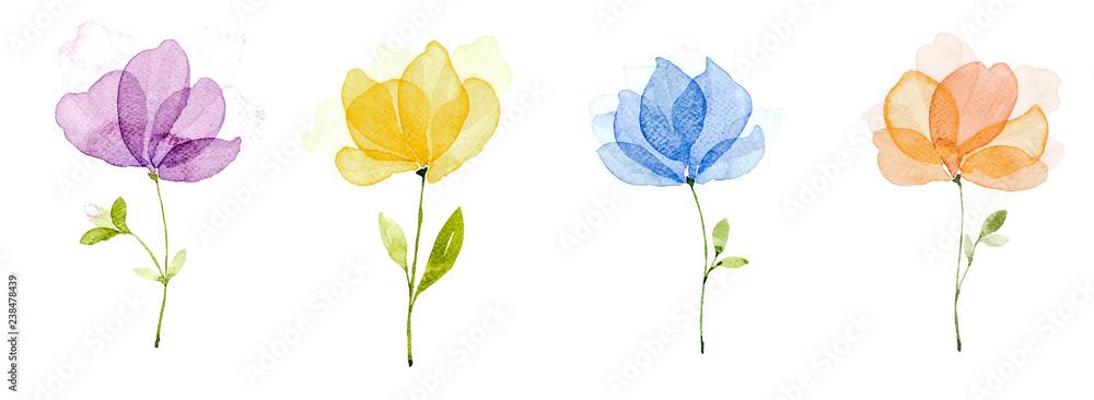 Fototapeta Picture water colour, hand draw, Purple flowers, yellow, blue, orange.