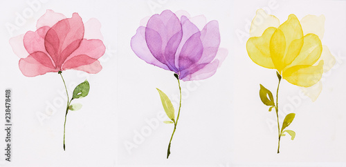 Obraz Picture water colour, hand draw, Red flowers, purple, yellow. - fototapety do salonu