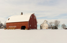 Beautiful Winter Farm Scene With A Bright Red Barn And White Corn Crib In A Snowy Field. Barn Has A Cupola And Lightning Rods. Concepts Of Farming, Rural Life, Holidays