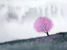 Watercolor Landscape Pink Tree Cherry Blossom Or Sakura  Leaf Falling To The Wind In Mountain Hill With Meadow Field. Traditional Oriental Ink Asia Art Style.hand Drawn On Paper.