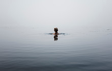 Rear View Of Woman Swimming In...