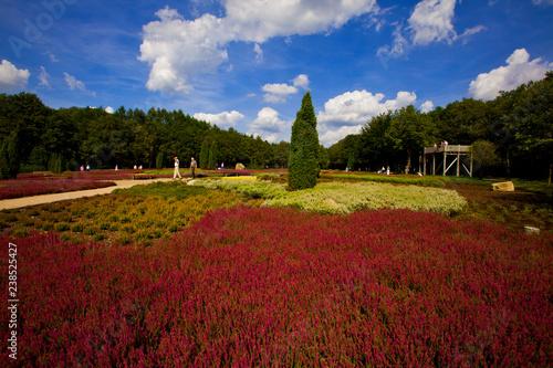 Schnevedinger Heidegarten