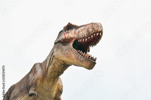 Dinosaur on the clear background,T rex,Tyrannosaurus rex