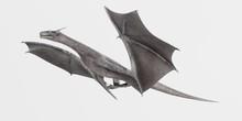 Realistic 3D Render Of Dragon