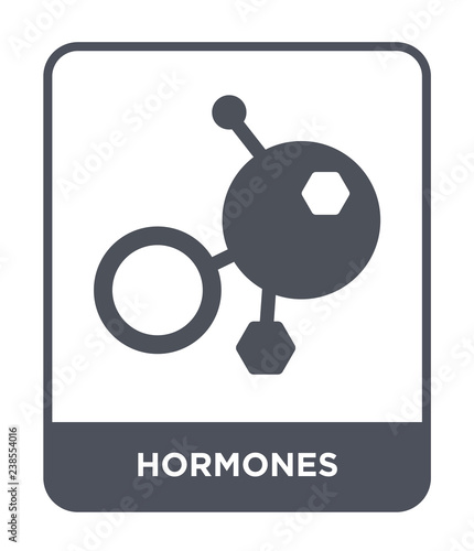 Photo hormones icon vector