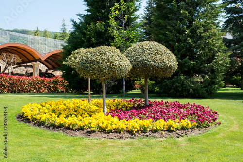 Poster Jaune View of an attractive backyard with blooming flowers, conifers and well-kept lawns - wide angle view